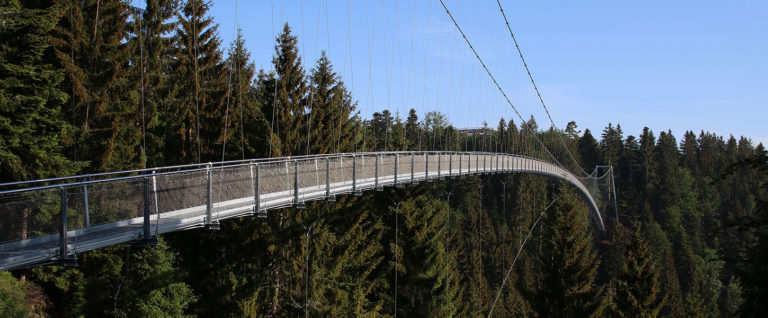 Hängeseilbrücke Wildline